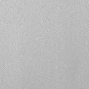 Giấy Lan Vi | Giấy Astrosilver Diagonale - Giấy mỹ thuật