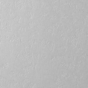 Giấy Lan Vi | Giấy Astrosilver Farfalle - Giấy mỹ thuật