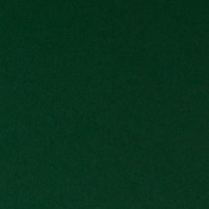 Giấy Lan Vi | Giấy Dali Green - Giấy mỹ thuật