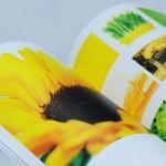 Giấy Mỹ Thuật Lan Vi | Lanvi Paper - Giấy mỹ thuật Monnalisa
