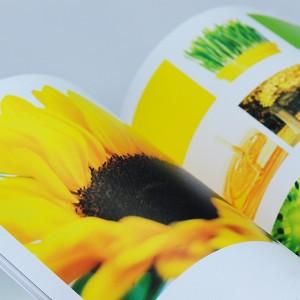 Giấy Mỹ Thuật Lan Vi   Lanvi Paper - Giấy mỹ thuật Monnalisa