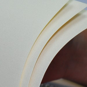 Giấy Mỹ Thuật Lan Vi | Lanvi Paper - Giấy mỹ thuật Dali Dore