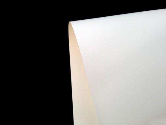 Giấy Mỹ Thuật Lan Vi   Lanvi Paper - Giấy mỹ thuật Natural Evolution