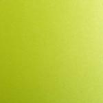 Giấy Lan Vi   Giấy So Silk Shocking Green - Giấy mỹ thuật