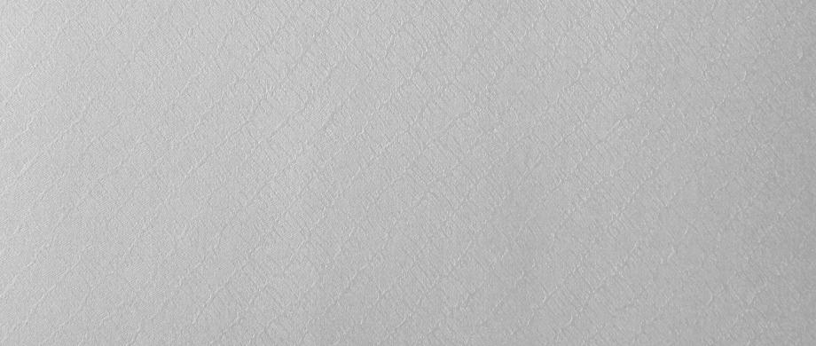 Giấy Lan Vi | Giấy mỹ thuật Astrosilver Diagonale