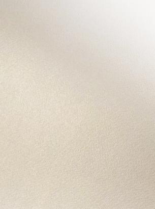 Giấy Mỹ Thuật Lan Vi | Lanvi Paper - Giấy mỹ thuật Modigliani Dore candido