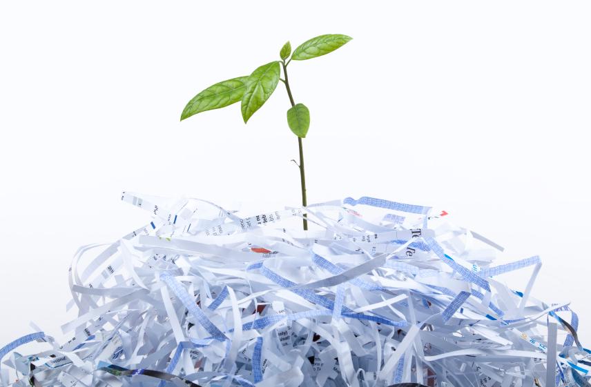 Giấy Lan Vi | Vẻ đẹp của giấy tái chế